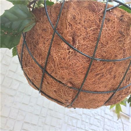 ダイソーの吊りカゴに寄せ植え